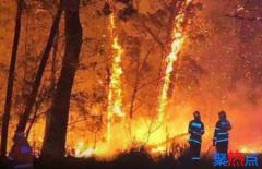 澳大利亚山火蔓延至南美 澳洲火灾