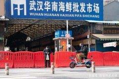 武汉最早新冠肺炎患者详情 否认去过华南海鲜市场