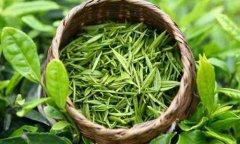喝绿茶的功效与作用 绿茶十大好处