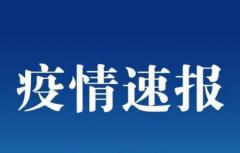 中国疫情最新数据 31省区市新增11例境外输入