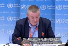 中国出现的猪流感不是新病毒