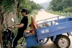 汪峰开三轮摩托车撞树