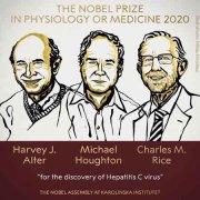2020年诺贝尔生理学或医学奖揭晓