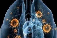 31省区市新增确诊15例 11月12日中国疫情最新数据