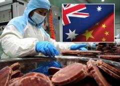 五眼联盟密谋制裁中国