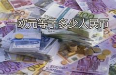 一欧元等于多少人民币