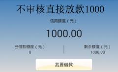 不审核直接放款1000 无需审核秒过小额度借款平台