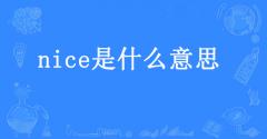 nice是什么中文意思