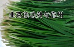 韭菜的功效与作用