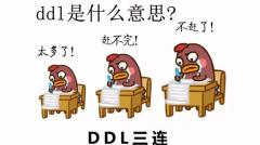 ddl是什么意思