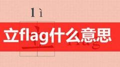 flag是什么意思中文