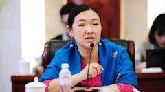 代表建议非法代孕组织从业者入刑