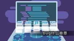 bug是什么意思