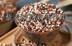 藜麦的功效与作用