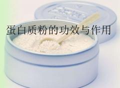 蛋白质粉的功效与作用