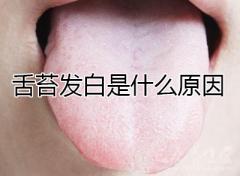 舌苔发白是什么原因呢