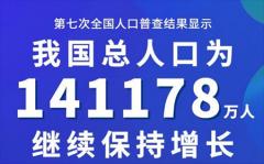 第七次全国人口普查数据达141178万人