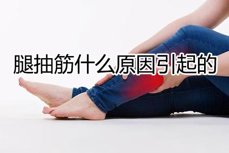 腿抽筋什么原因引起的