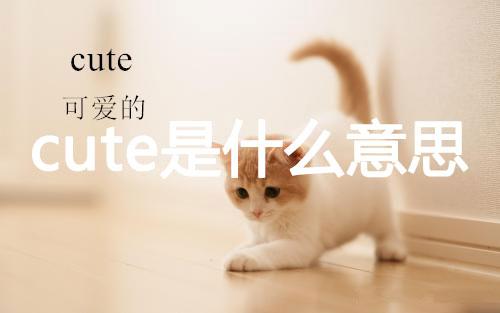 cute是什么意思