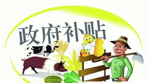2021年重点强农惠农政策公布