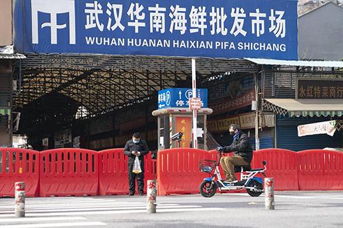华南海鲜市场疫情或冷链引入